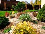 Разовая каменная россыпь и растения