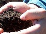 Хорошая почва для растений