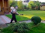 Распыление химикатов для защиты зелени