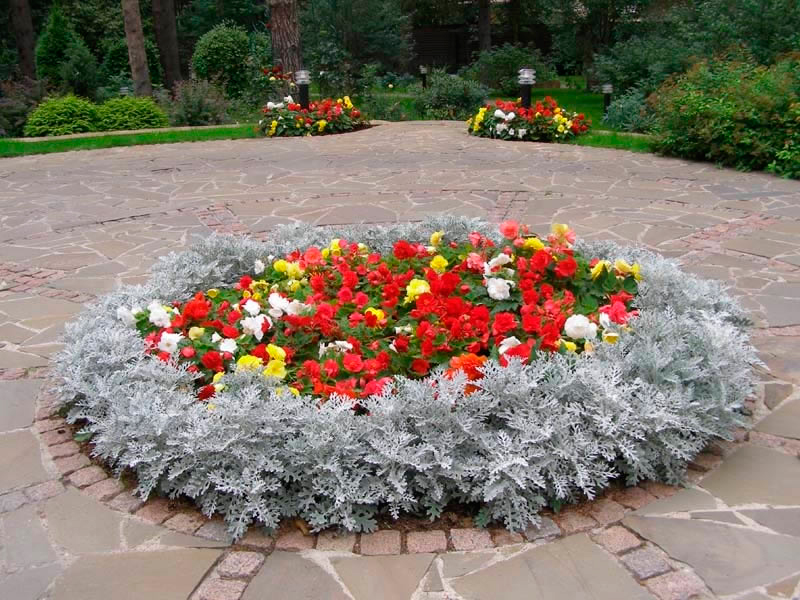 Клумба круглая с цветами