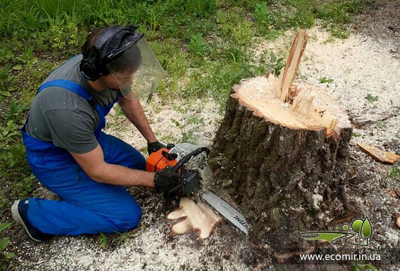 Корчевка и удаление пней, уничтожение корней деревьев - цена