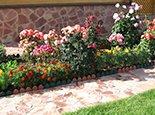 Плитняк обожженный и розы