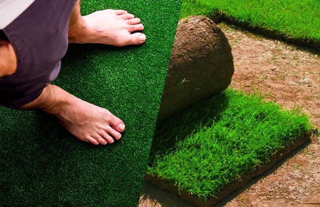 Рулонный газон: от укладки до ухода