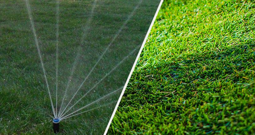процесс уклакди газона